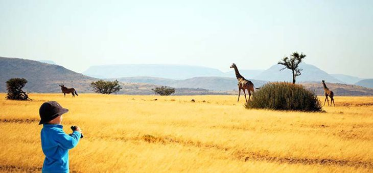 Faire du safari avec les enfants